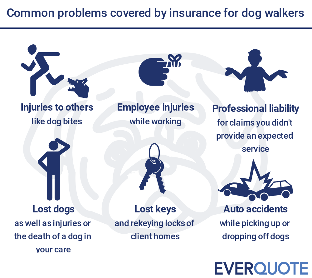 Problems covered by dog walker insurance