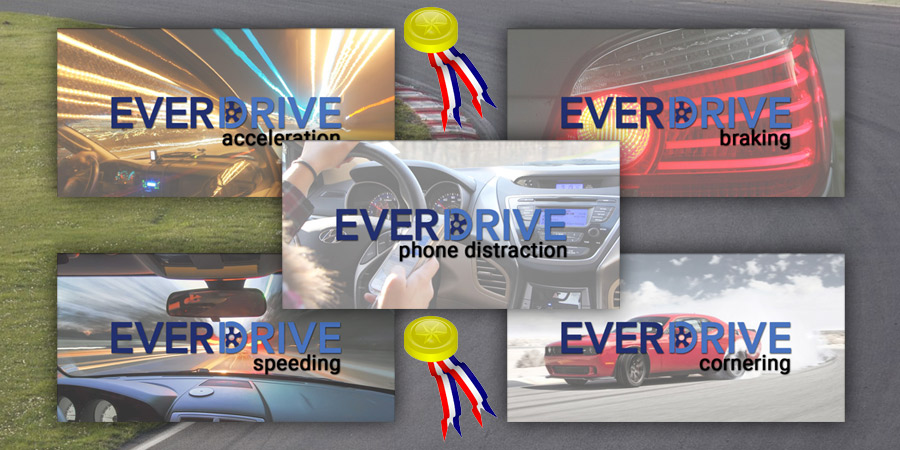 EverDrive Safe Driving Olympics