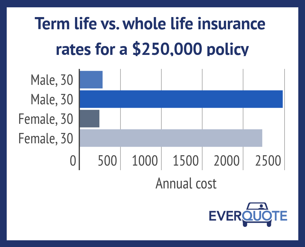 Term life vs. whole life insurance rates